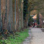 Correr más kilómetros: ¿más entrenamientos o más kilómetros por entrenamiento?