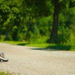 Saltarse entrenamientos los días previos a la carrera: ¿deberías recuperarlos?