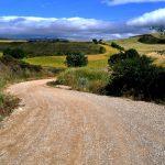 Entrenar o correr sobre tierra, ¿permite afrontar bien una carrera en asfalto?